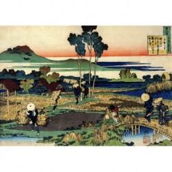 Tela Hokusai Art 05 cm 35x50 Papiarte Stampa su tela Canvas da falso d'autore