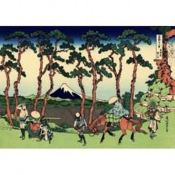 Tela Hokusai Art 13 cm 35x50 Papiarte Stampa su tela Canvas da falso d'autore